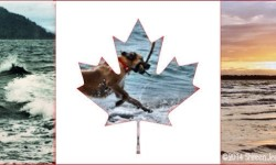 From Sea to Lake to Shining Sea: Happy Canada Day 2014